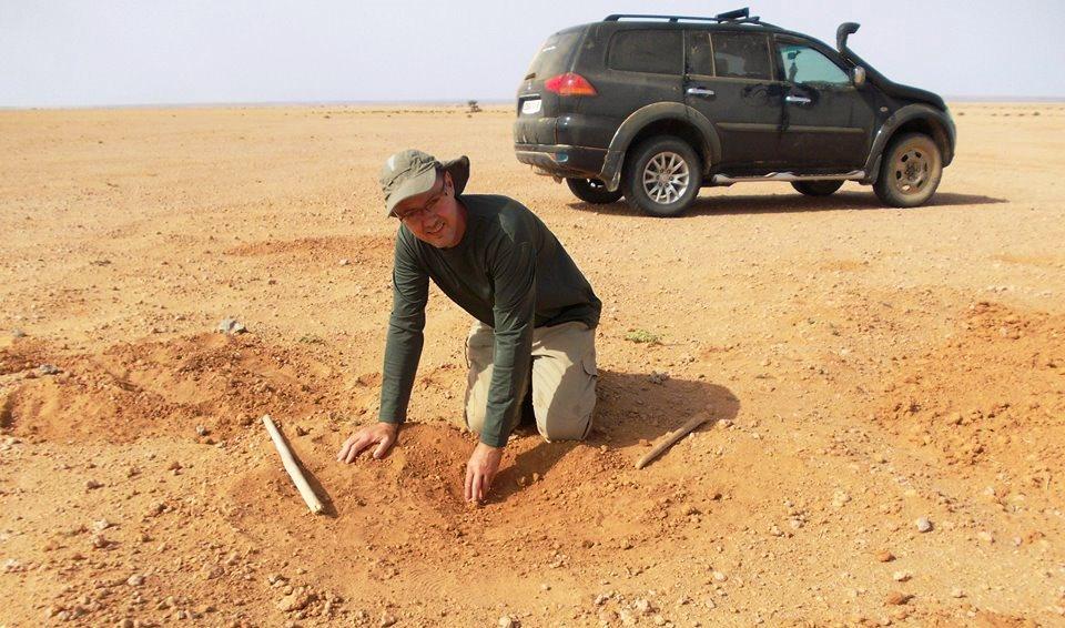 Aydar meteorite strew field