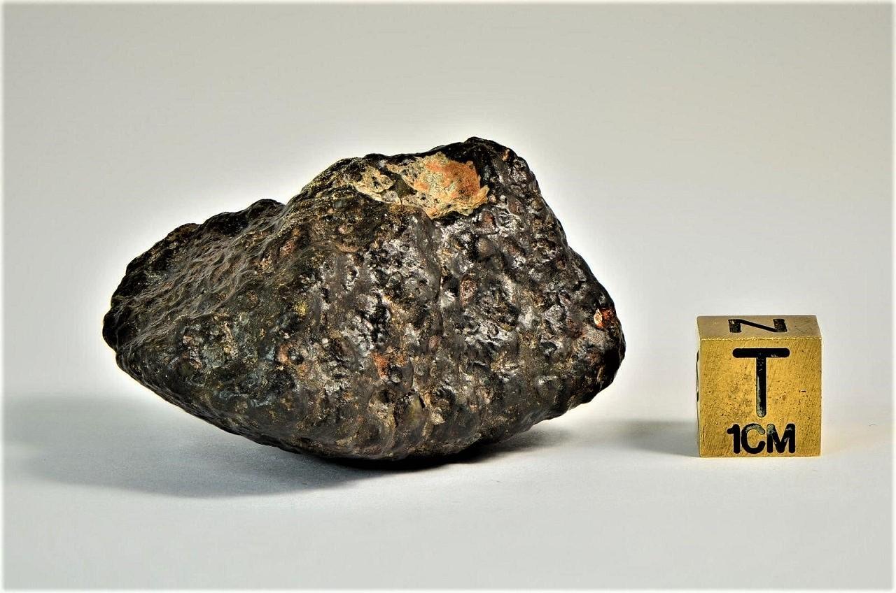 Carbonaceous cv3 meteorite
