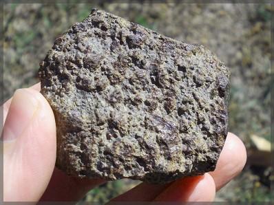 Chondrite 183 g b