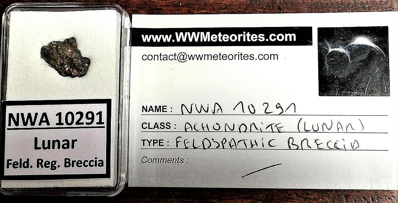 Nwa 10291 lunar meteorite