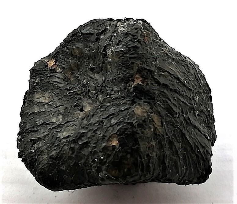 Nwa 11668 shergottite 5 5g