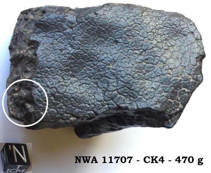 Nwa 11708
