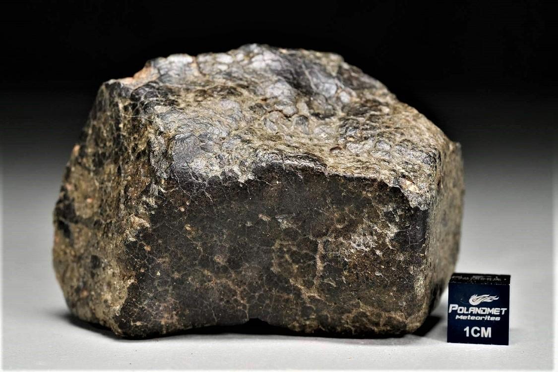 Nwa 2698 complete stone c 1