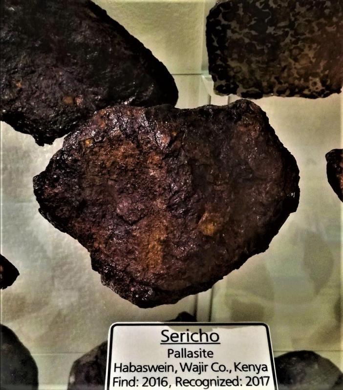 Sericho 1566g pallasite