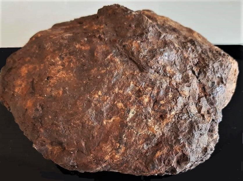 Sericho 2963 g