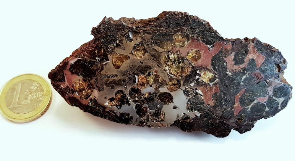 Sericho meteorite pallasite 213 g
